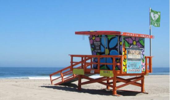 Defibrillatore per la spiaggia, Defibrillatore per lo Stabilimento Balneare